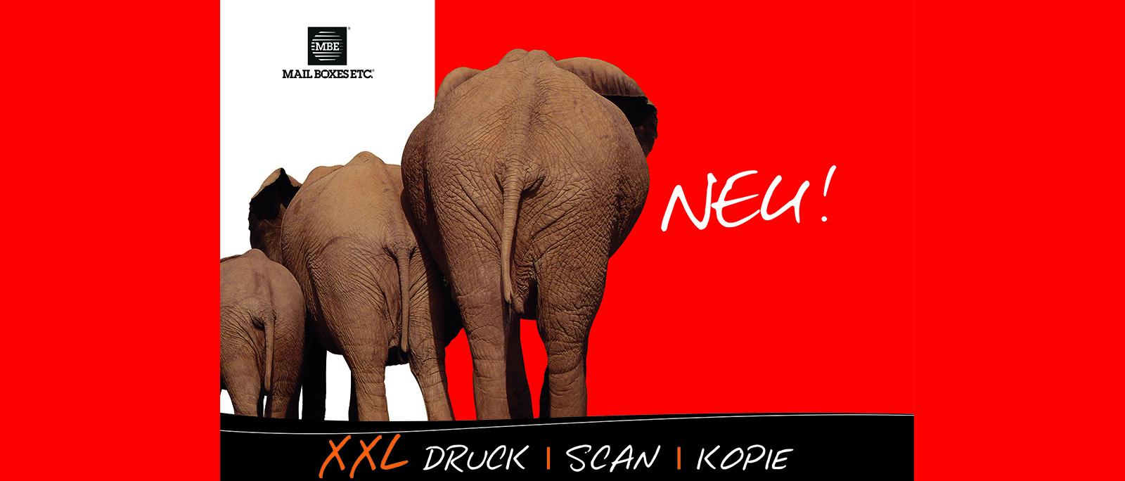 Großformat_Elefanten